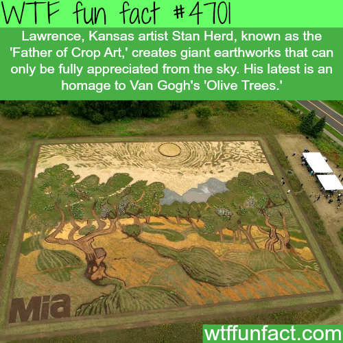 Father of Crop Art