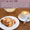 fika wtf fun facts