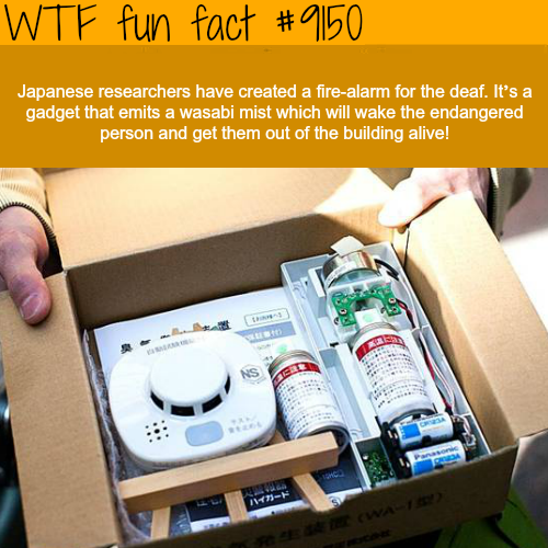 Fire-alarm for the deaf - WTF Fun Facts