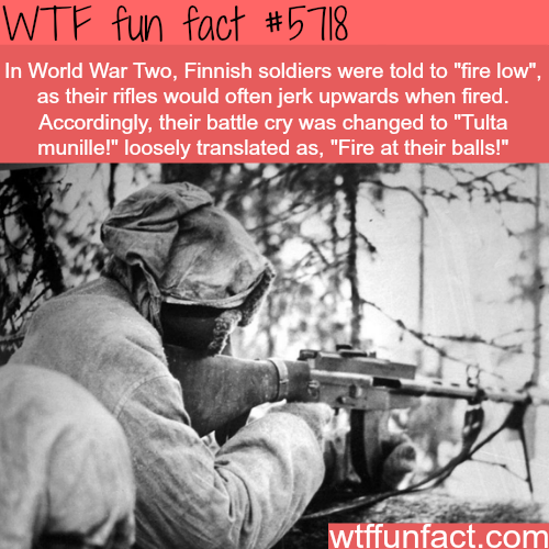 Fire at their balls - WTF fun facts