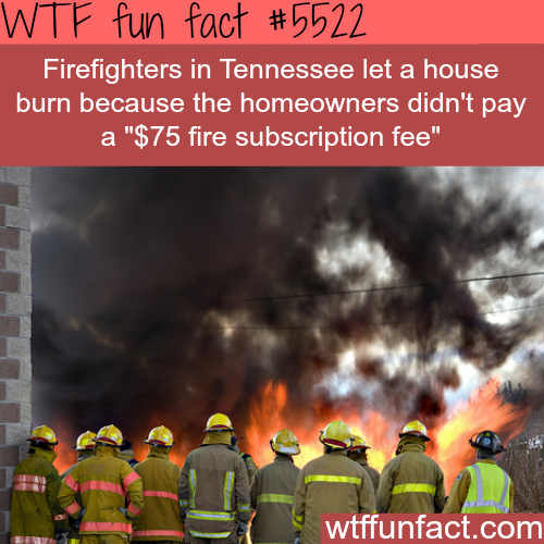 Firefighters let a house burn because the owner didn't pay fee - WTF fun facts