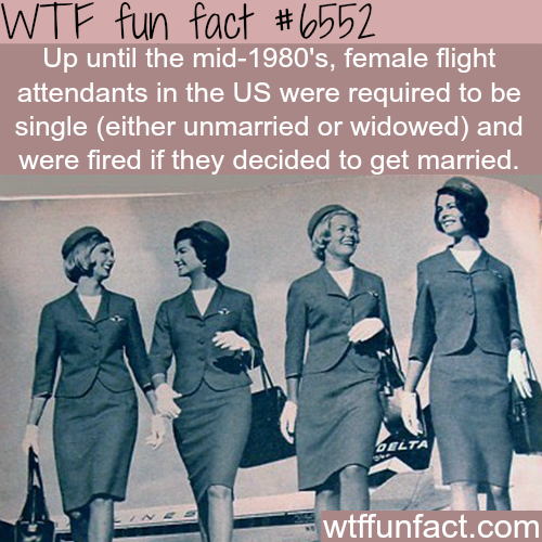 Flight attendants in the US had to be single - WTF fun facts