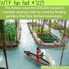 floating gardens wtf fun fact