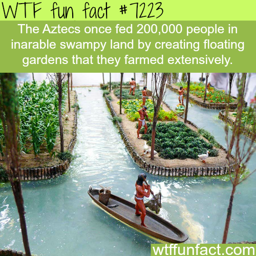 Floating Gardens - WTF Fun Fact