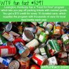 food for fines wtf fun facts