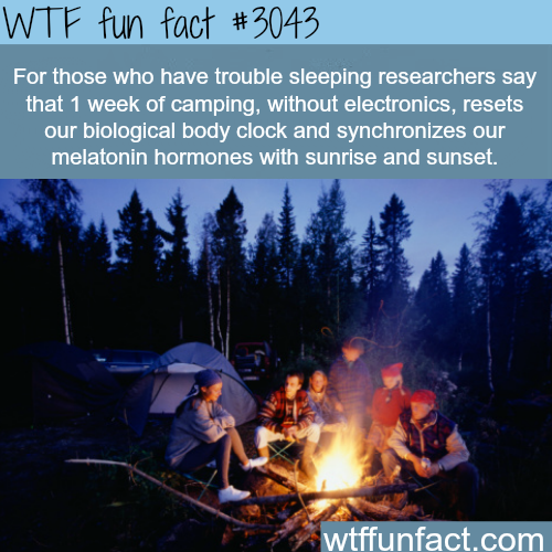 For people who have trouble sleeping -  WTF fun facts