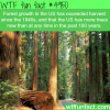 forest growth in the usa wtf fun facts