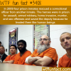 four prison inmates save an officer