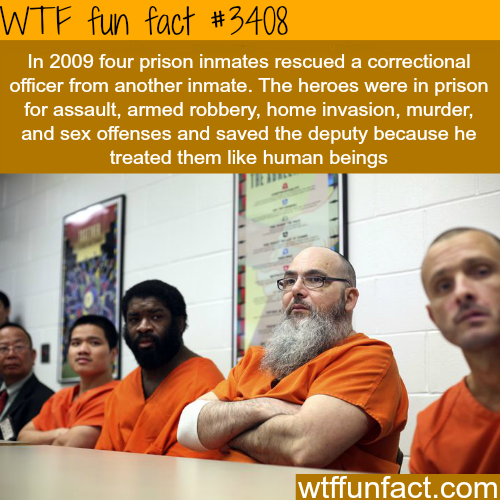 Four prison inmates save an officer -  WTF fun facts