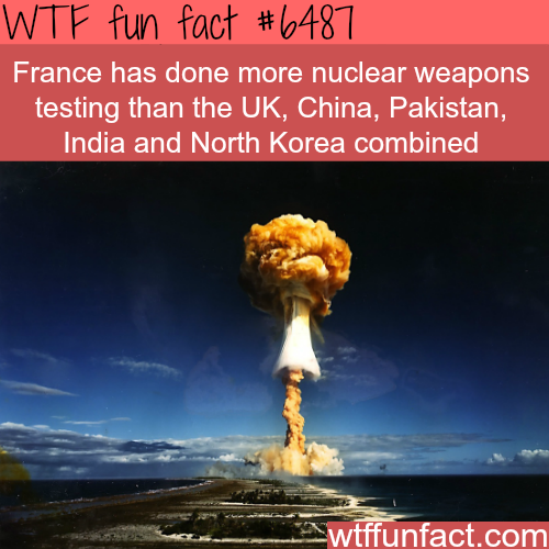 France - WTF fun facts