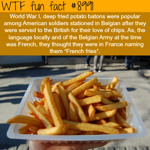French fries are not from France - WTF fun fact