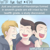 friendship in high school wtf fun facts
