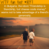 friendship quotes wtf fun fact