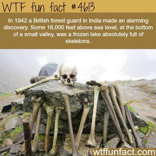 Frozen lake full of skeletons - WTF fun facts