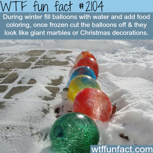 Frozen Water Balloons - WTF fun facts