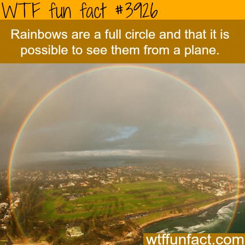 Full Circle rainbow - WTF fun facts
