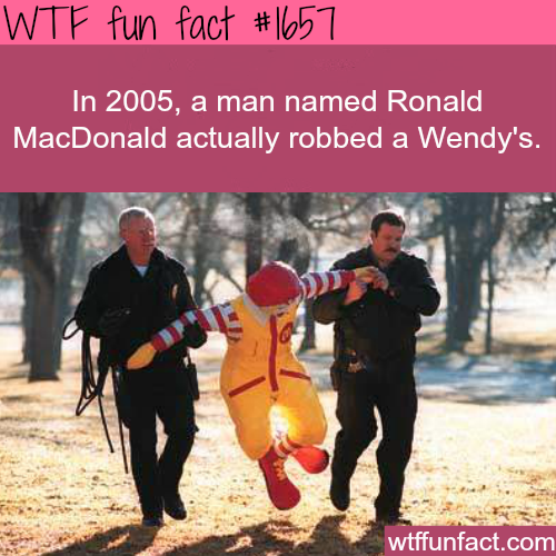 Funniest crimes in history -WTF fun facts