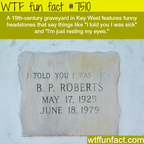 Funny headstones - WTF FUN FACTS