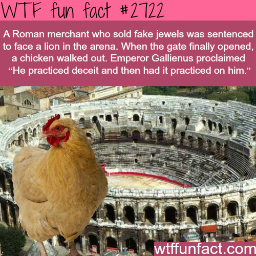 Funny Roman Jokes - WTF fun facts