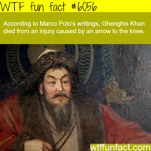 Genghis Khan cause of death - WTF fun facts