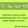 german language facts