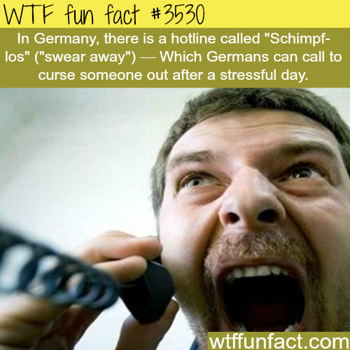 Germans can call this hotline to release their stress on - WTF fun facts