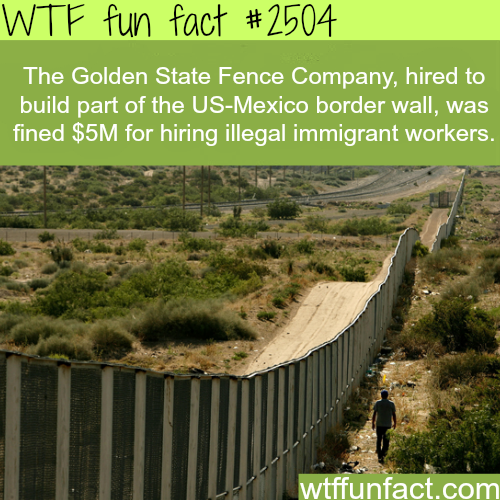 Golden State Fence Company Hires illegal immigrant - WTF fun facts