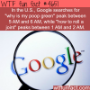 google searches wtf fun facts