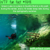 green lake austria wtf fun facts