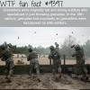 grenadiers wtf fun facts