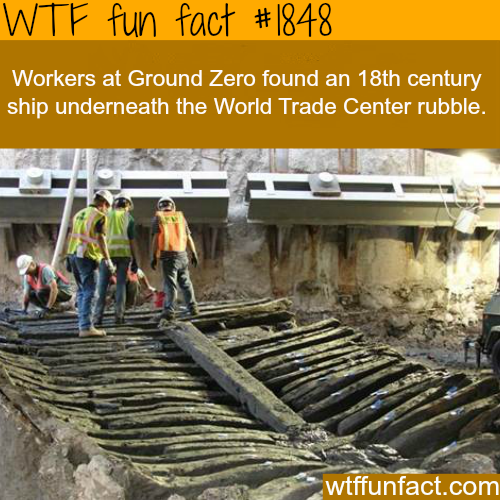 Ground Zero's ship -WTF fun facts