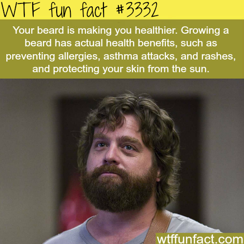 Growing a beard is healthy for you -WTF fun facts