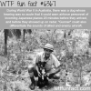 gunner the dog wtf fun facts