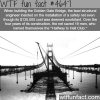 halfway to hell club wtf fun facts