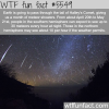 halleys comet wtf fun facts
