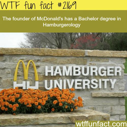 Hamburger University -WTF fun facts