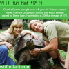 harriet the tortoise wtf fun fact