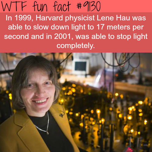 Harvard Physicist slows down light to 17 meter per hour. - WTF fun fact