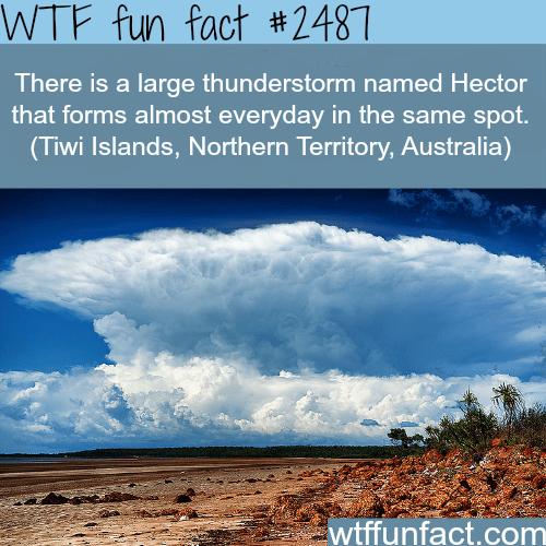 Hector thunderstorm