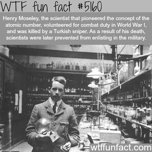 Henry Moseley - WTF fun facts