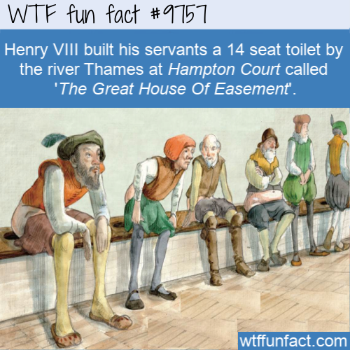 Henry VIII built his servants a 14 seat toilet by the river Thames at Hampton Court called 'The Great House Of Easement'.