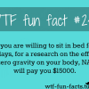 here i come nasa d more of wtf fun facts are