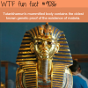 history wtf fun fact