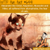 hitler had a fear of cats wtf fun facts