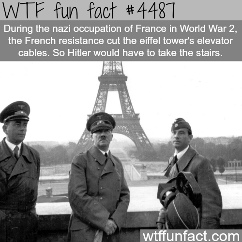 Hitler in Paris -   WTF fun facts