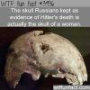 hitlers skull wtf fun facts