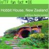 hobbit house walls new zealand