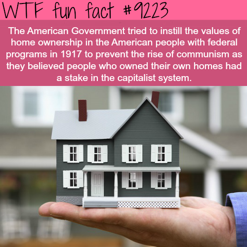 Home ownership in America - WTF Fun Fact