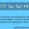 homeless fact