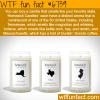 homesick candles wtf fun fact